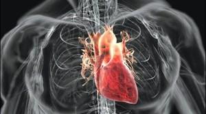 cuore-prevenire-attacco-cardiaco-sportivo-braccialetto